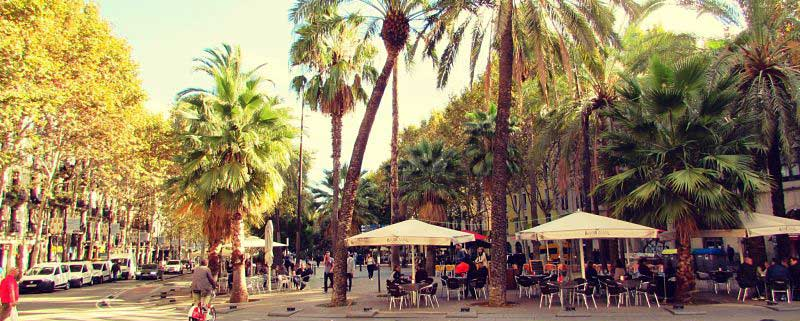 What to See and Do in Barcelona's Bohemian Raval Barrio